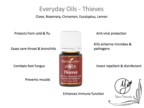 Wednesday Wellnes Everyday Essential Oils Thieves