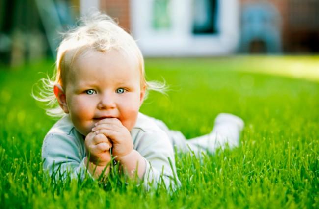 Bug-Off-Baby-e1400473221331